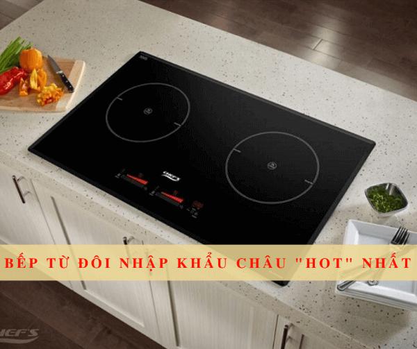 9+ Mẫu bếp từ đôi giá rẻ nhập khẩu chính hãng chất lượng tốt nhất